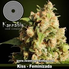 Kiss - Kannabia - Feminizada