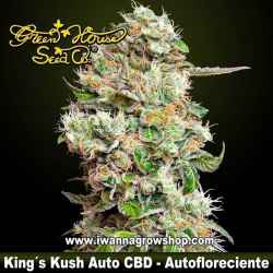 King´s Kush Auto CBD – Autofloreciente – Green House