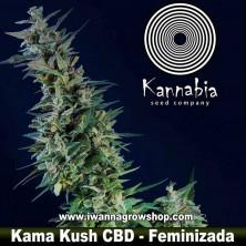 Kama Kush CBD – Feminizada – Kannabia Seeds