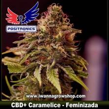 CBD+ Caramelice – Feminizada