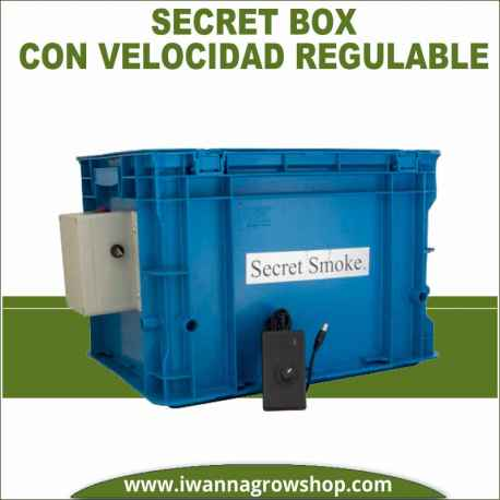 Secret Box Regulable