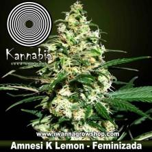 Amnesi K Lemon – Feminizada