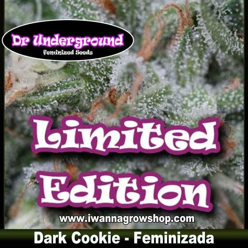 Dark Cookie