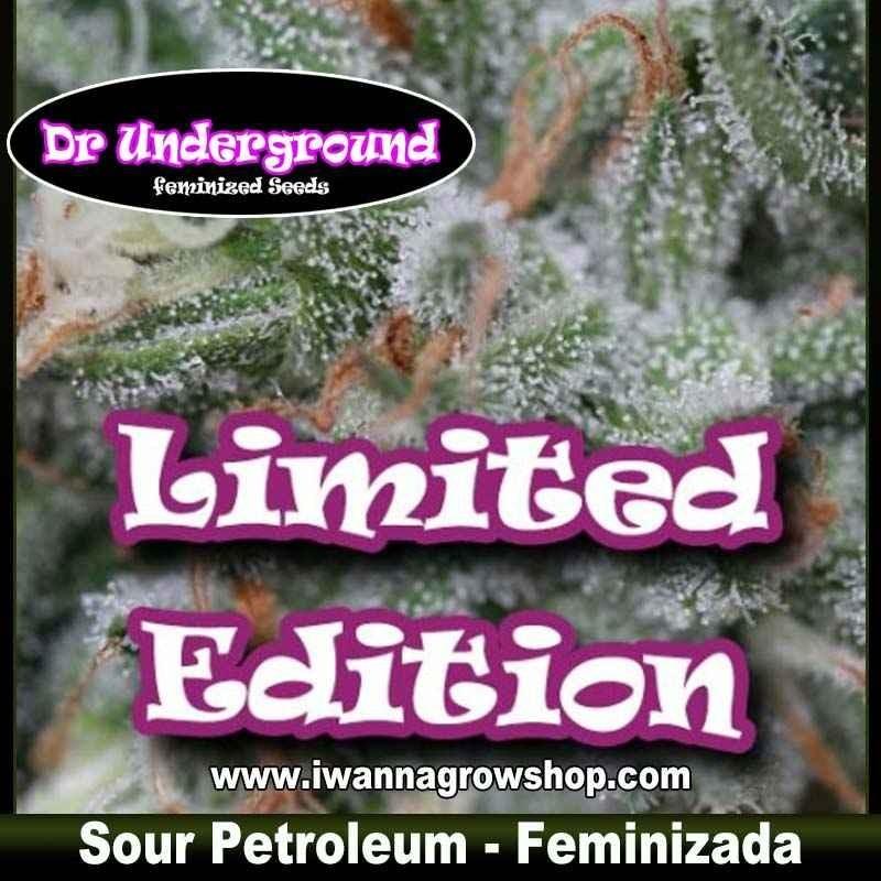 Sour Petroleum – Feminizada – Dr. Underground