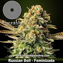 Russian Doll – Feminizada