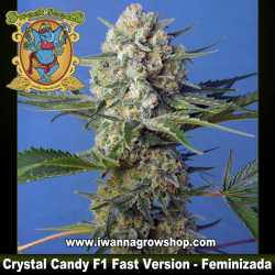 Crystal Candy F1 Fast Version