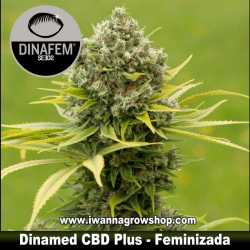 Dinamed CBD Plus