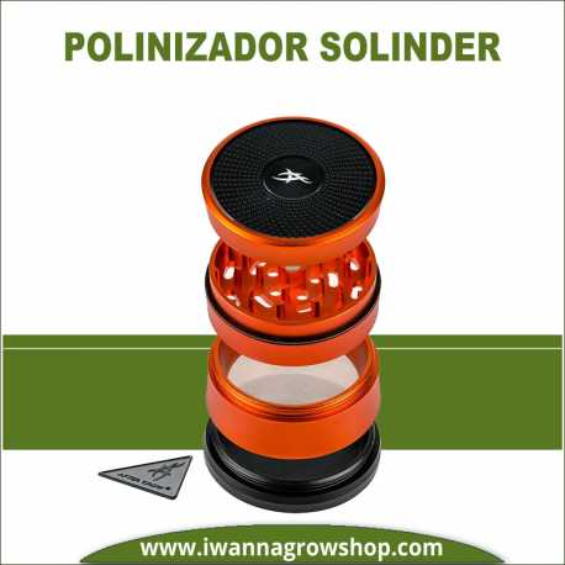 Polinizador Solinder