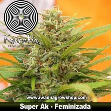 Super AK – Feminizada