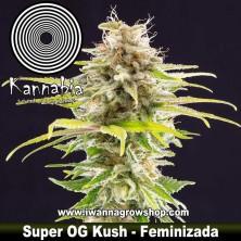 Super OG Kush – Feminizada