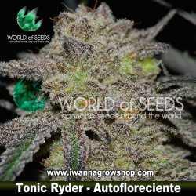 Tonic Ryder – Autofloreciente