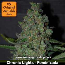Chronic Lights – Feminizada – Original Sensible