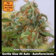 Gorilla Glue 4 Auto – Autofloreciente