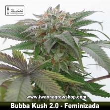 Bubba Kush 2.0