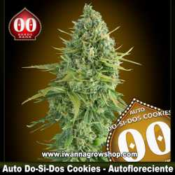 Auto Do-Si-Dos Cookies