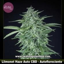 Llimonet Haze Auto CBD