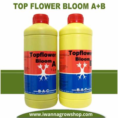 Top Flower Bloom A+B