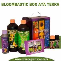 Bloombastic Box Ata Terra