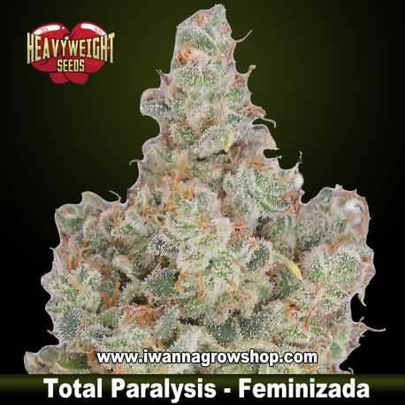 Total Paralysis