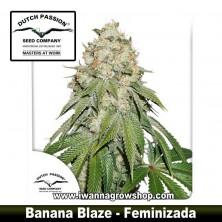 Banana Blaze