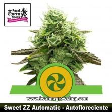 Sweet ZZ Auto