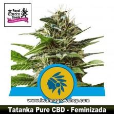 Tatanka Pure CBD