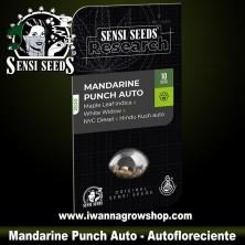Mandarine Punch Auto