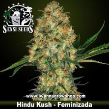 Hindu Kush – Feminizada