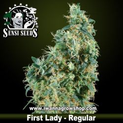 First Lady – Regular