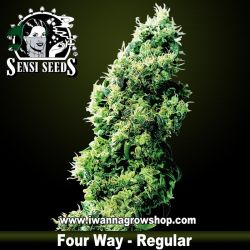 Four Way – Regular