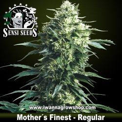Mother´s Finest – Regular