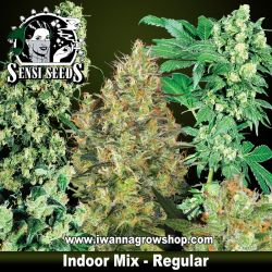 Indoor Mix – Regulares