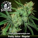 Fruity Juice – Regular