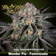 Wonder Pie