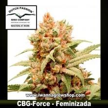 CBG-Force