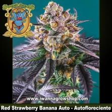 Red Strawberry Banana Auto