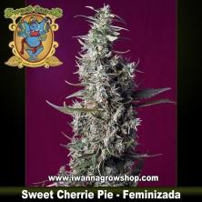 Sweet Cherrie Pie