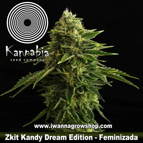 Zkit Candy Dream Edition