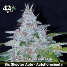 Six Shooter Auto