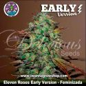 Eleven Roses Early Version