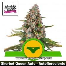Sherbet Queen Auto