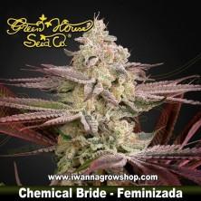 Chemical Bride