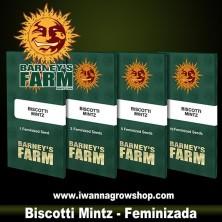 Biscotti Mintz