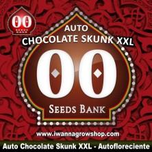 Auto Chocolate Skunk XXL