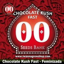 Chocolate Kush Fast