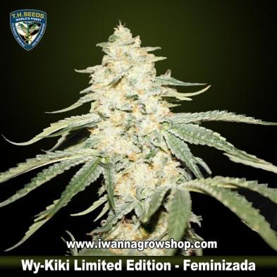 Wy Kiki Limited Edition