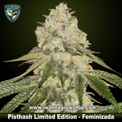 Pisthash Limited Edition