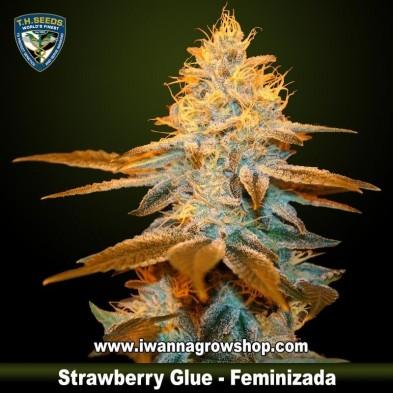 Strawberry Glue
