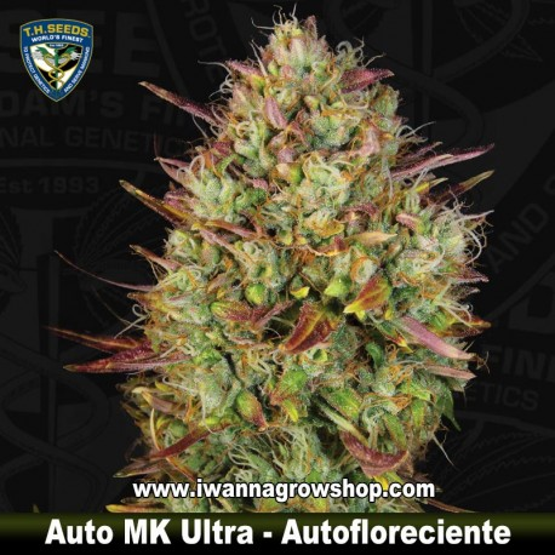 Auto MK Ultra