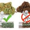 Cómo fumar maría sin tabaco